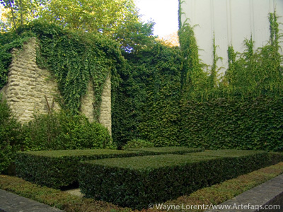 Photograph of Ivy - Brussels, Belgium