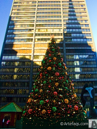 Photograph of Christmas Tree - Chicago, Illinois