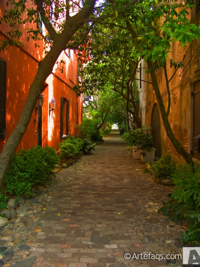Photograph of Alley - Charleston, South Carolina