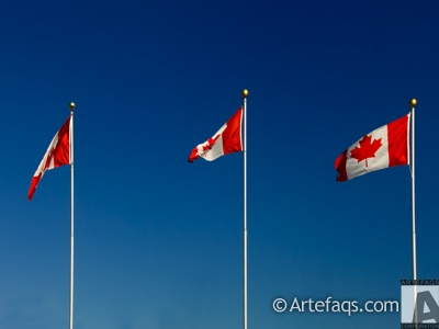Stock photo of Canadaian flags - Toronto, Ontario