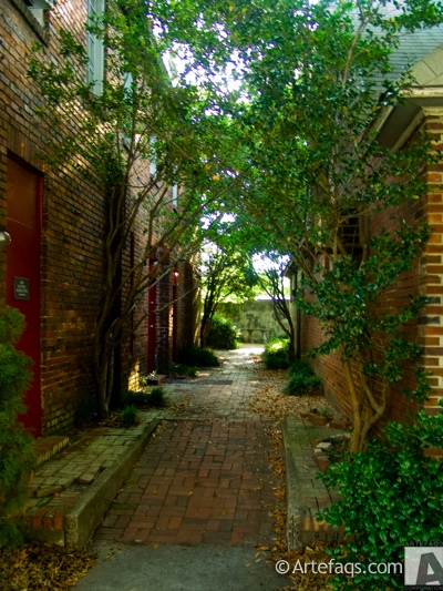 Photograph of Alley - Columbia, South Carolina