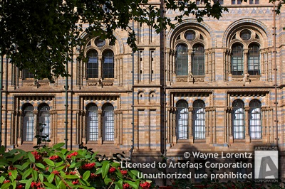 Stock photo of Natural History Museum - London, England
