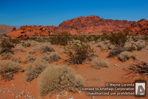 Stock photo of Desert landscape